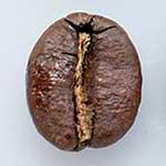 コーヒーで痩せる!コーヒーダイエット